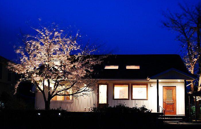 夜桜を楽しむ平屋の家