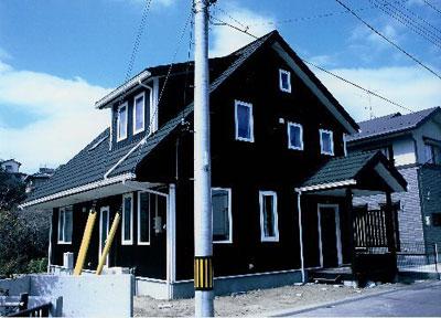 緑の大屋根が映える家