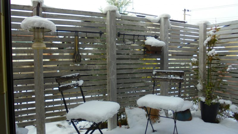 今年初めての積雪