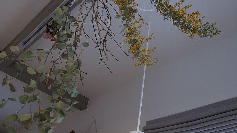 天井を見上げるとドライフラワーの花畑