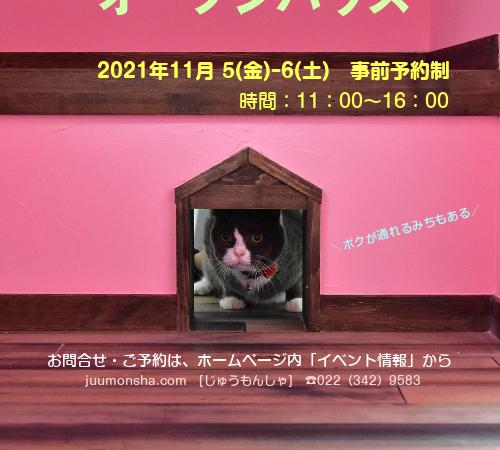 [イベント] オープンハウス開催(11/5金ー6土)~大家族に乾杯!の家